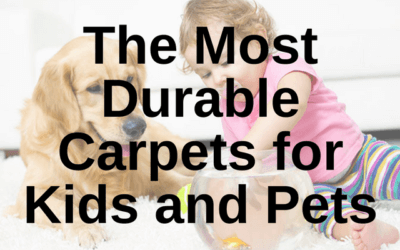 Most Durable Carpets for Kids and Pets