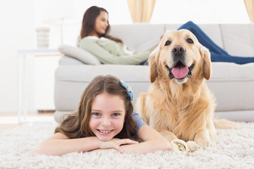 kid and dog on clean carpet in snohomish county