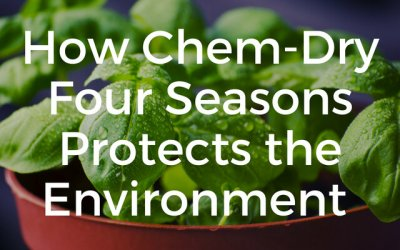How Chem-Dry Four Seasons Protects the Environment