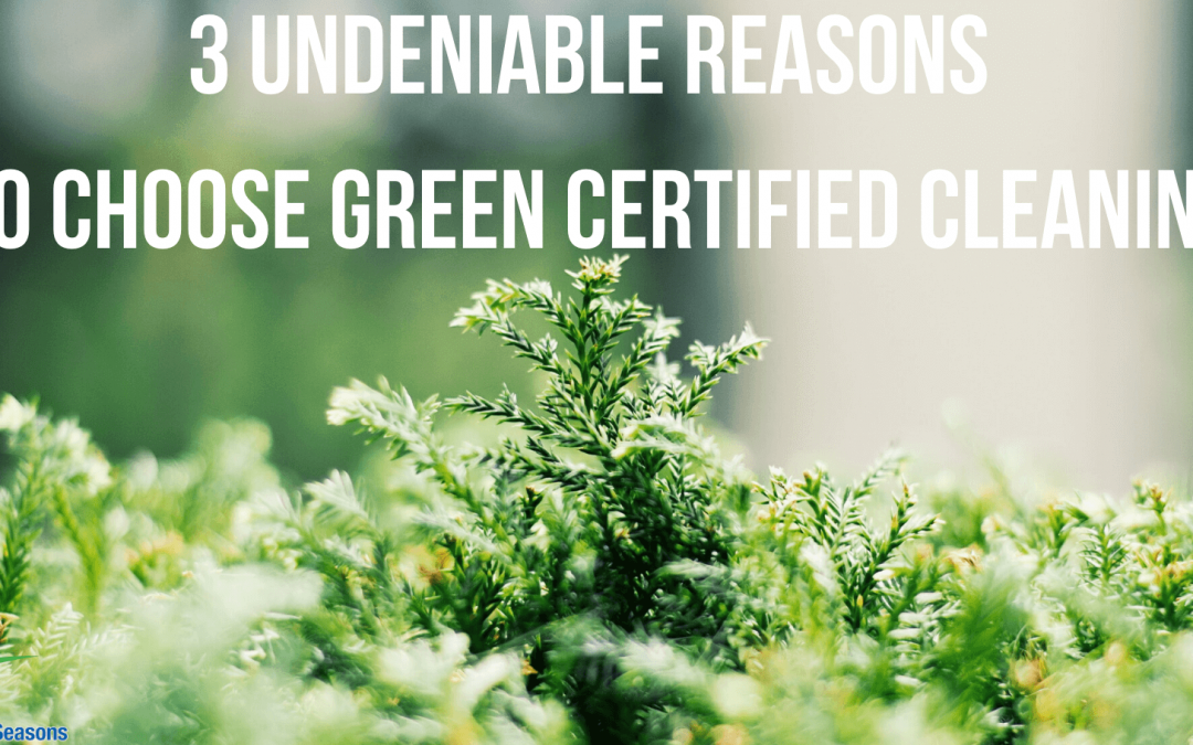 3 Undeniable Reasons To Choose Green Certified Cleaning