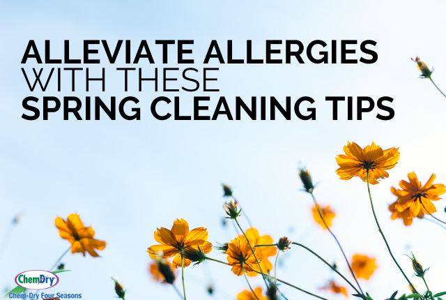 Alleviate Allergies with these Spring Cleaning Tips